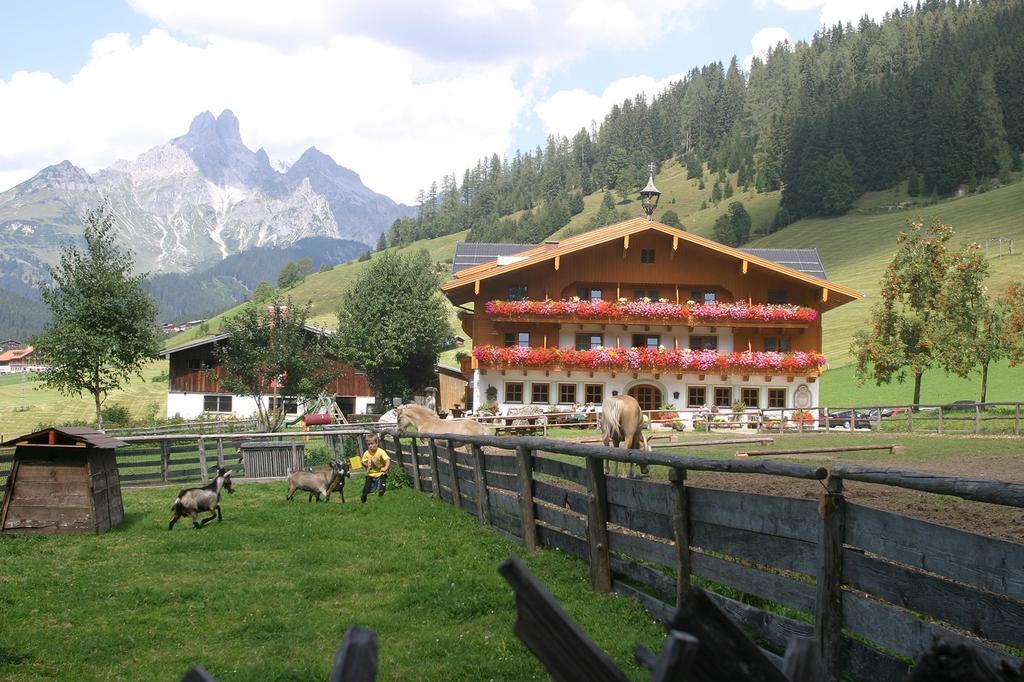 Bio Hotel Hammerhof Filzmoos Osterreich