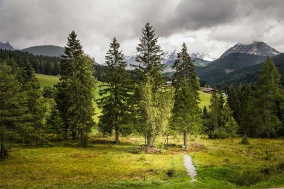 Kraftplatzwanderungen Filzmoos - Naturhotel Hammerhof, SalzburgerLand - kraftplatz baumkreis beim neubergerhof