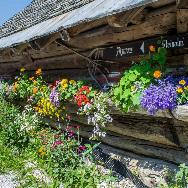 Wanderurlaub Salzburger Land, Wanderurlaub Filzmoos, Wanderurlaub Österreich, Hotel Hammerhof-moosalm steinalm
