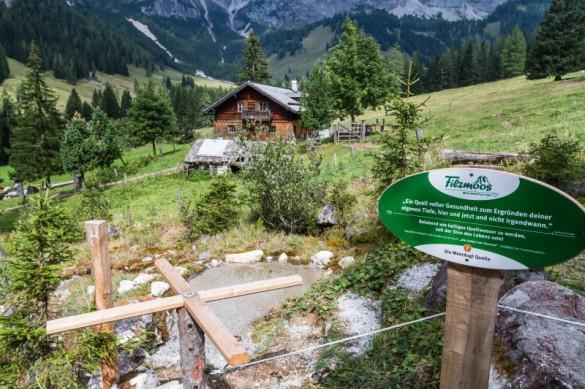 Kraftplatzwanderungen Filzmoos - Naturhotel Hammerhof, SalzburgerLand - Meeraeuglquelle