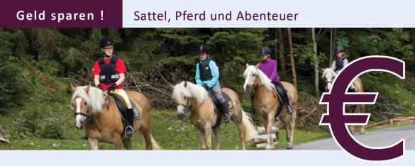 reiturlaub, reiterhof, haflinger, filzmoos, salzburg, österreich - Hammerhof7