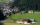 biohotel hammerhof, biohotel hammerhof filzmoos, biohotel hammerhof salzburger land, biohotel hammerhof bischofsmütze, biohotel hammerhof österreich_hammerhof-hotel mit umgebung1